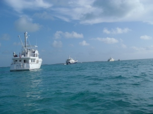 Three Nordhavns at Big Majors/Staniel Cay