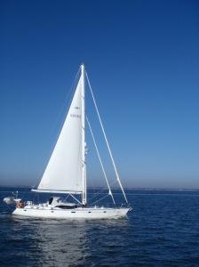 Astahaya, our sailing buddy
