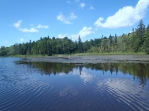 Washabuck River