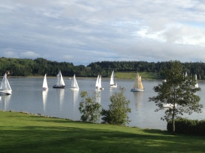Sailboat racing at Princes Inlet