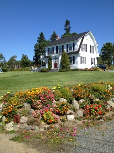 Wilfred's House - he built it in 1951 and it is surrounded by beautiful flowers