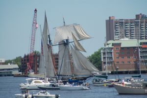 Tall ship in the Parade of Sail