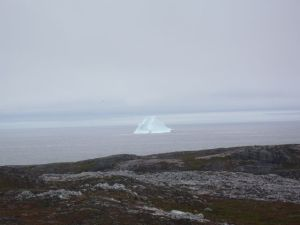 Icebergs are a common sight on hikes