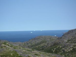 Icebergs dot the sea