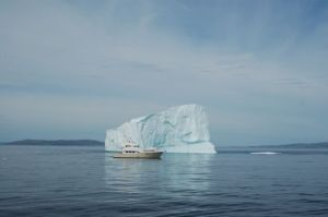Migration and the iceberg