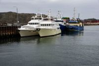 Shear Madness and Migration with fishing boats atwharf