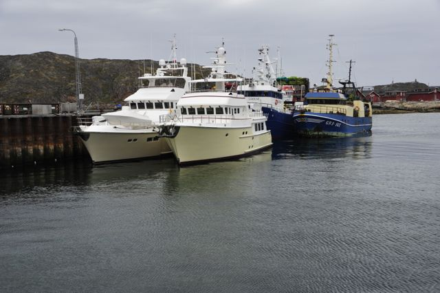 Shear Madness and Migration with fishing boats at wharf (photo by Steve D'Antonio)