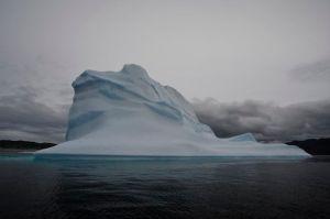 Iceberg up close (photo by Steve D'Antonio)