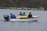 Locals going seal-hunting