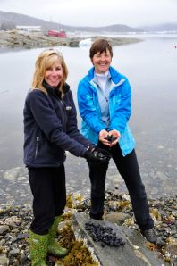 Marci and Kathy gather some mussels in Rodebay (Photo by Steve D'Antonio