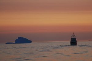 Migration and iceberg at sunrise as we depart Labrador