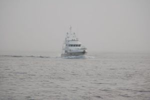 A bit of fog but flat seas crossing the Davis Strait