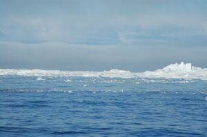 View of the ice wall at the isjfiord