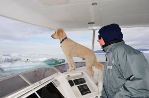 Capt. Gulliver keeps a lookout for ice while George steers (Photo by Steve D'Antonio)