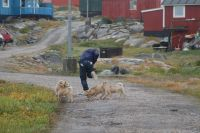 2014-08 Greenland –776