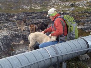 Getting the last puppy hugs in Greenland