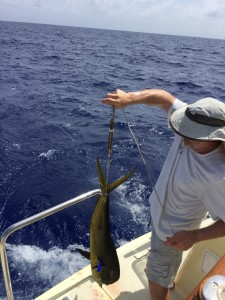 Bradley shows off a 12-pund mahi-mahi