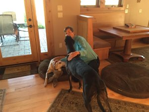 Kathy discovers she loves greyhounds