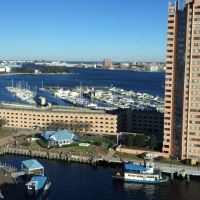 View of Tidewater Yacht Marina in Portsmouth,VA