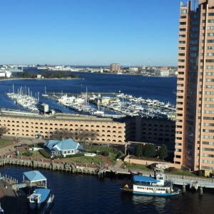 View of Tidewater Yacht Marina in Portsmouth, VA